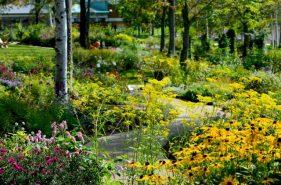 【北海道花园街道】在这8座花园充份感受大自然!