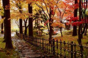 函馆市内和郊外的秋天!五大红叶景点大推荐