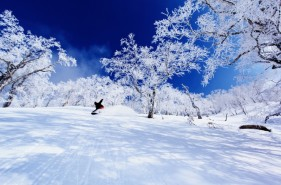 Rusutsu Resort|Three reasons I recommended it