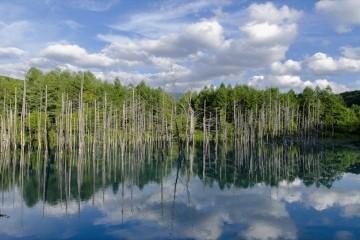 biel blue pond