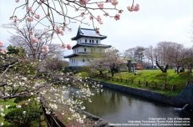 Hokkaido's Cherry Blossoms|Top 8 Cherry Blossom Spots Chosen by Hokkaido Residents