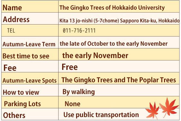hokkaido-university-data