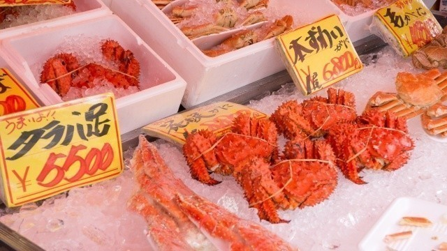 Feast on Hokkaido Crab! Types of crab and how to eat them.