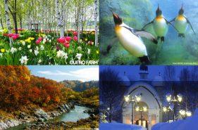 아사히야마 동물원(旭山動物園)을 비롯한 다양한 볼거리! 아사히카와(旭川)에서 추천하는 관광 명소 7선