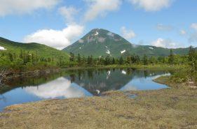 【일본에서 제일 늦은 7월에 벚꽃이 피는】라우스호(羅臼湖) 트레킹 체험기!