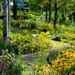 【홋카이도 가든 가도】 8개의 정원에서 대자연을 만끽하세요!
