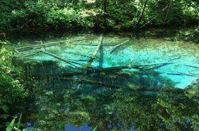코발트블루빛신비의연못,【카미노코이케(神の子池)】를찾아가다.