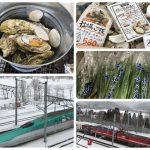 특산품 굴과 신칸센 열차에서 보는 전망이 멋진 곳! 시리우치초(知内町)로 가볼까요?