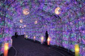 홋카이도의 추운 겨울을 예쁘게 물들이는☆ 절경의 일루미네이션 이벤트 8선!