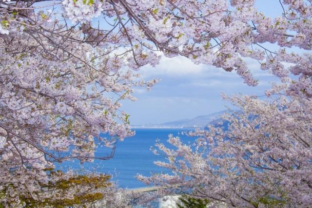 항구도시, 오타루(小樽)의 봄을 즐긴다! 추천 명소 & 이벤트