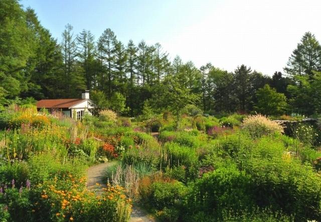 kazeno-garden2-640