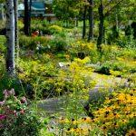 【北海道花園街道】在8座花園充份感受大自然!