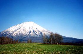 飽覽美麗自然風光!為您介紹,春日的北海道旅行、觀光與可看處♪