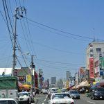札幌中央批發市場【場外市場】當地人推薦的熱門店家與厲害的購買術!