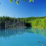 富良野、美瑛優質觀光景點與各時段標準行程!
