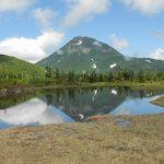 【全日本最慢?7月才綻放的櫻花】羅臼湖健行體驗遊記!