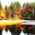 秋季來北海道旅行必看!推薦秋季景色超美的7個觀光景點