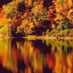 紅葉名所!在豐平峽水庫被詩畫般的秋色包圍的一天♪