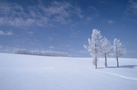 這裡真的是日本?!冬季限定嚴選絶景白色北海道10選