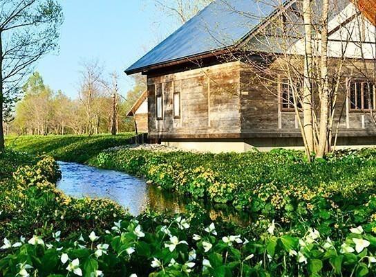 「六花之森」推薦私房景點,五感體驗北海道