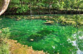富良野隱藏絕美拍攝景點「鳥沼公園-緑沼」,隨手拍出超美倒影