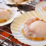 冬季北海道旅行精選5款海鮮美食