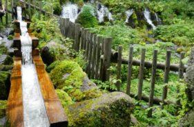 北海道名水之旅!羊蹄山湧水公園-京極町出水公園