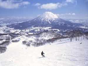 ニセコひらふスキー
