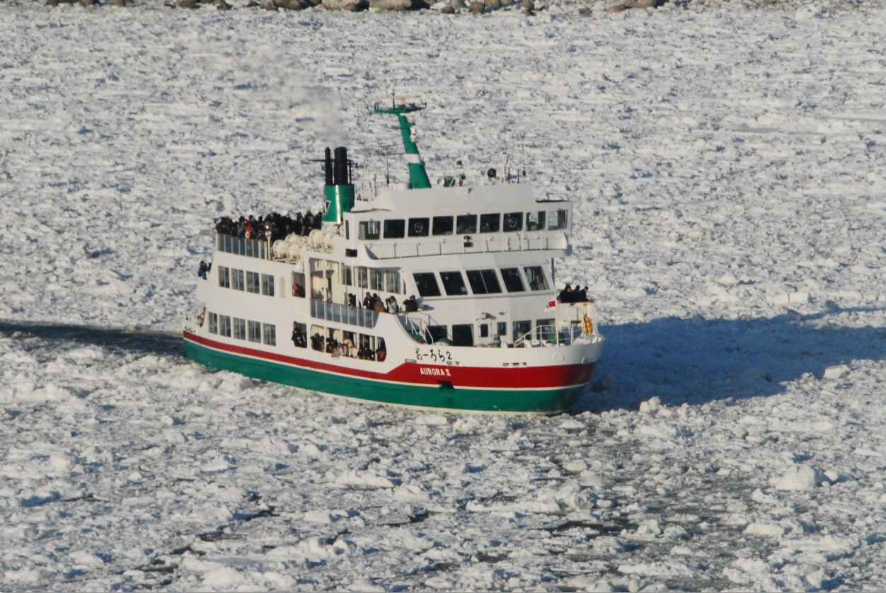 A goal-based comparison of drift ice viewing tours