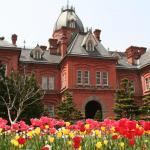 【王道コース】で巡る札幌観光スポット|初めての札幌旅♪