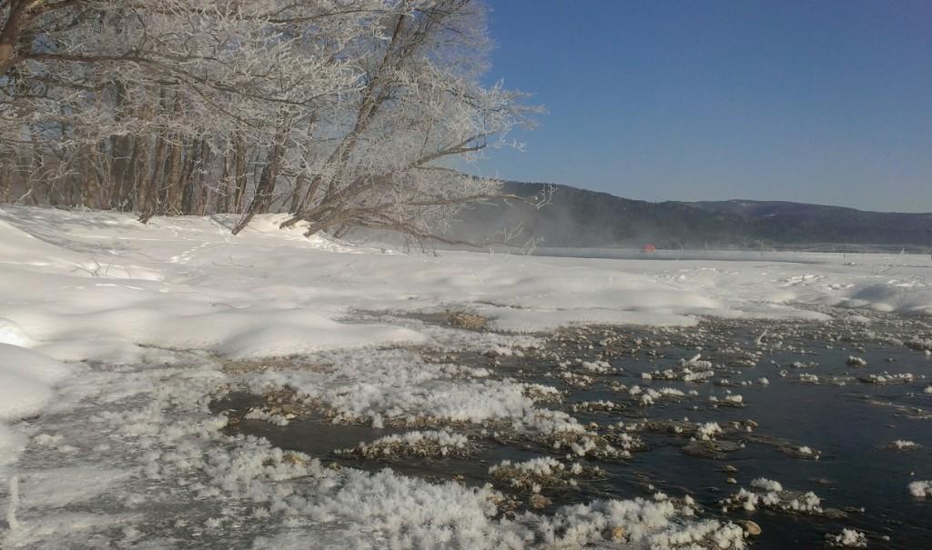 樹氷とフロストフラワー