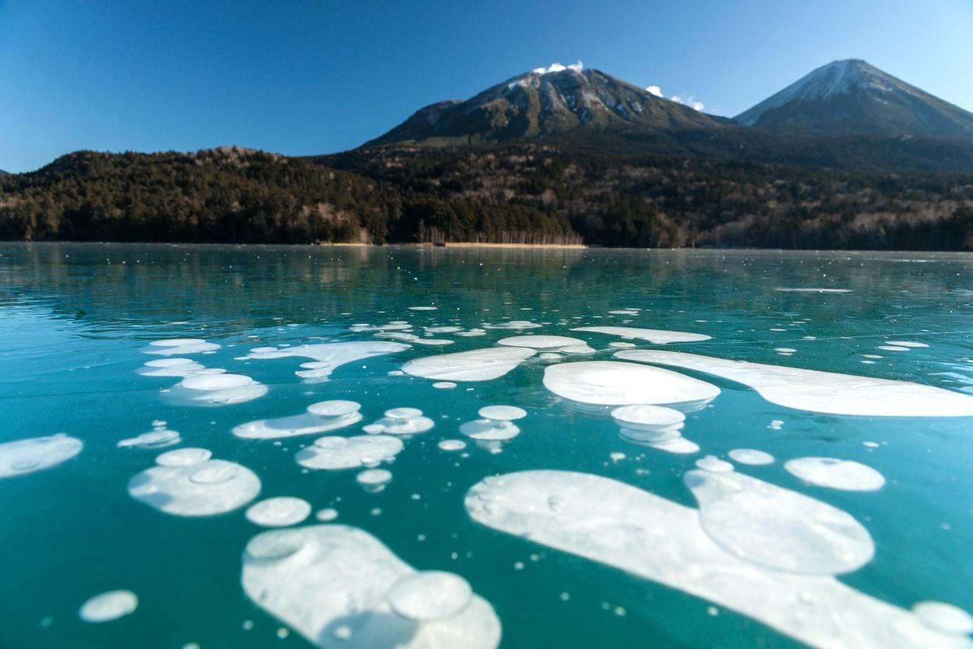 オンネトーの氷・白と緑のコントラスト