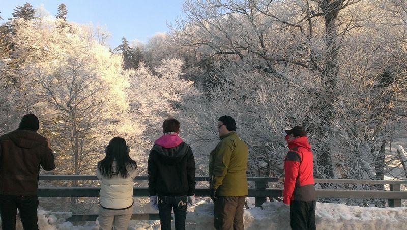 滝見橋の霧氷