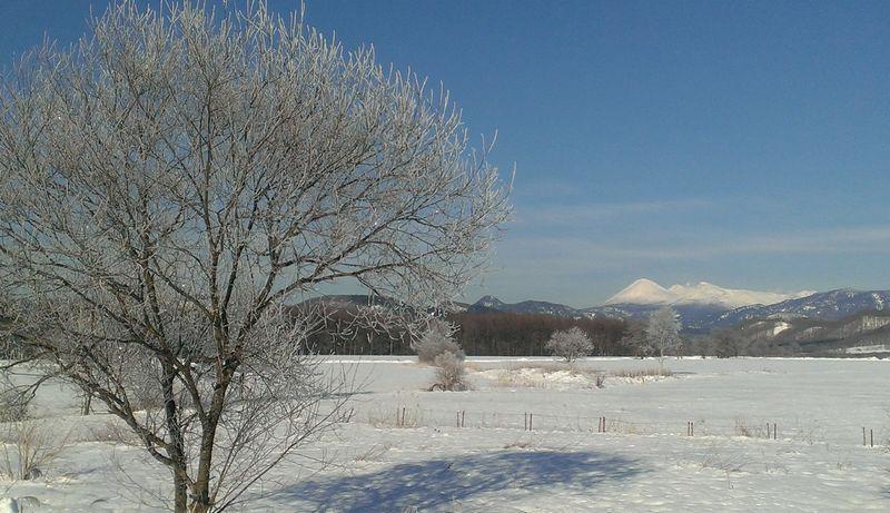 霧氷と雪景色の山々