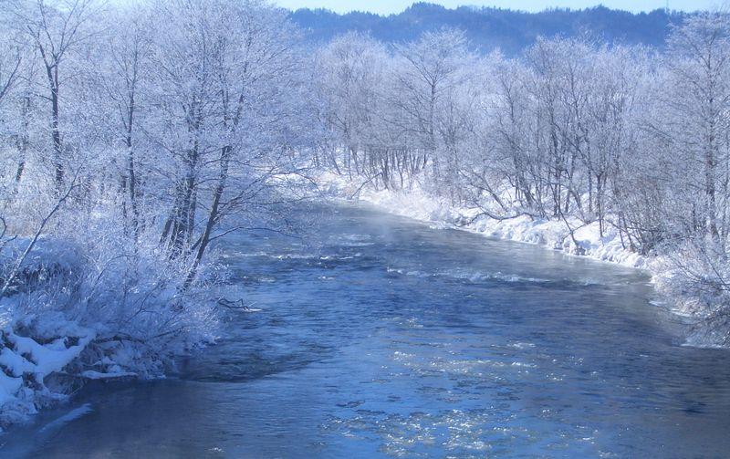 阿寒川と霧氷