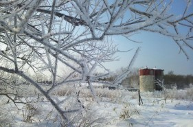 【冬の阿寒湖】霧氷が50キロも続く別世界・阿寒クリスタルロード