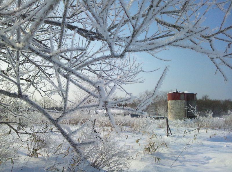 阿寒湖の霧氷