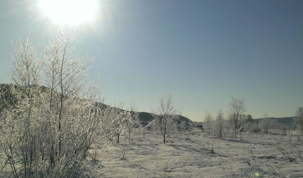 霧氷銀座の景色1
