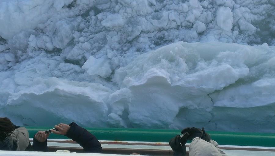 大きな流氷の塊に驚く