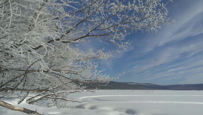 阿寒湖と霧氷