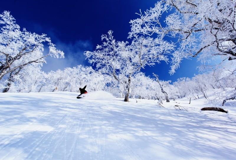rusutsu-ski-image-1