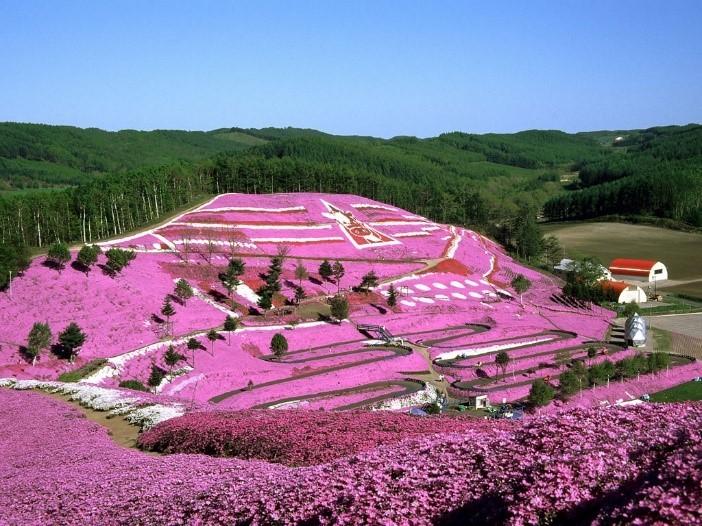 higashimokoto-park2