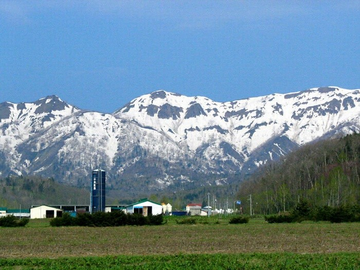 spring-farm-image