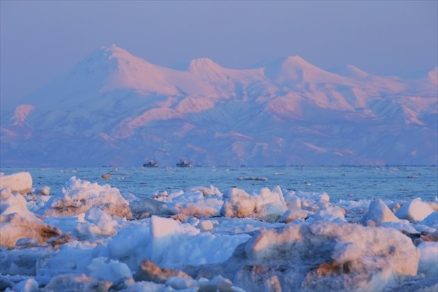 betsukai-scallop-ice-flote