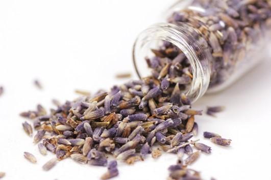 furano-lavender-popuri-min