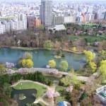 春、札幌でお花見なら!定番から穴場まで、桜の名所7選