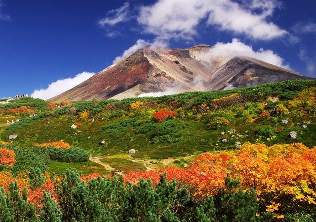北海道・旭岳の紅葉
