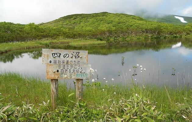 lake-rausu-shi-no-numa