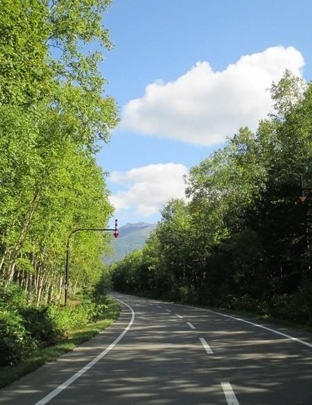 美瑛の観光地イメージ