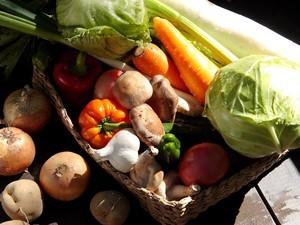 フェーリエンドルフの野菜